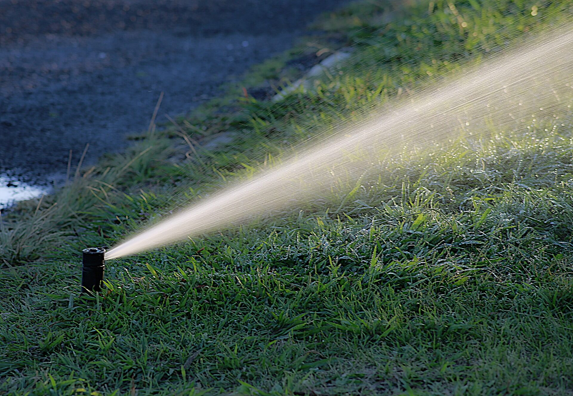 Pop-up Sprinkler